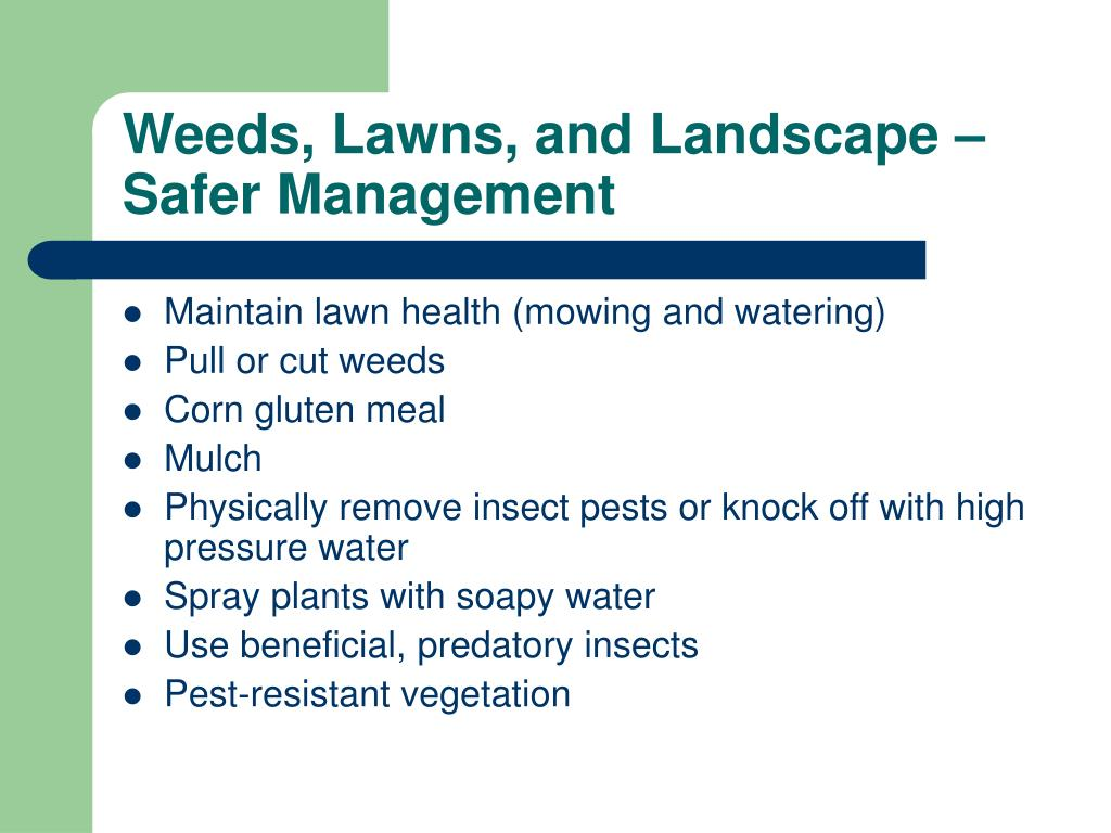 Weeds, Lawns, and Landscape – Safer Management