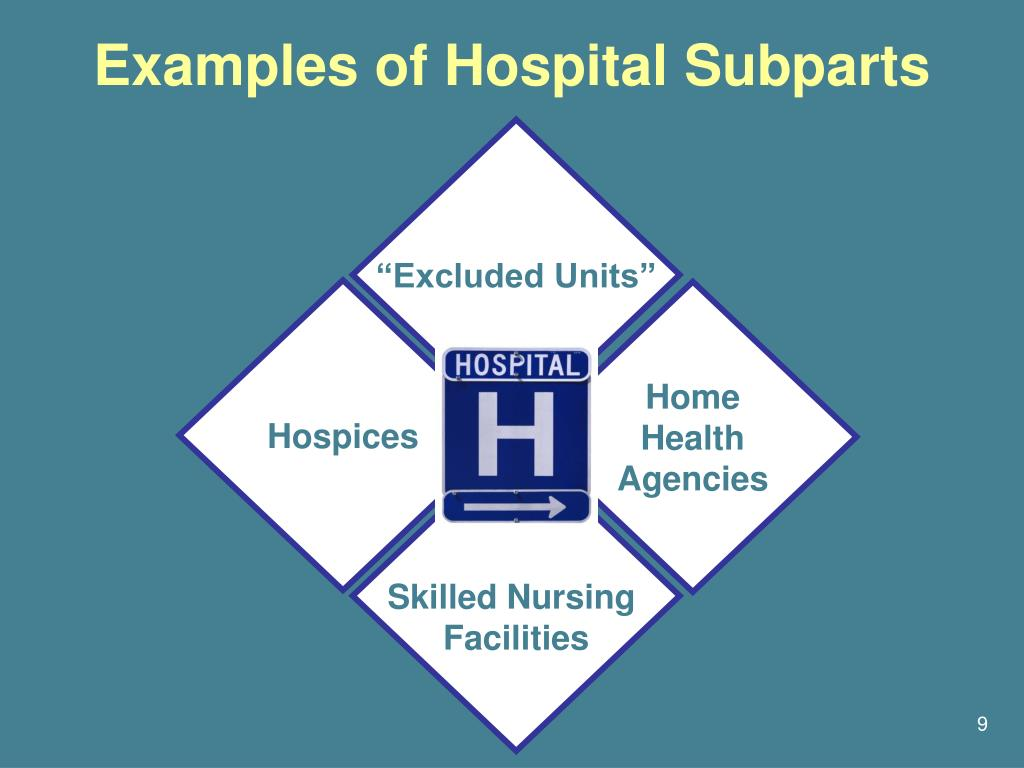 Examples of Hospital Subparts