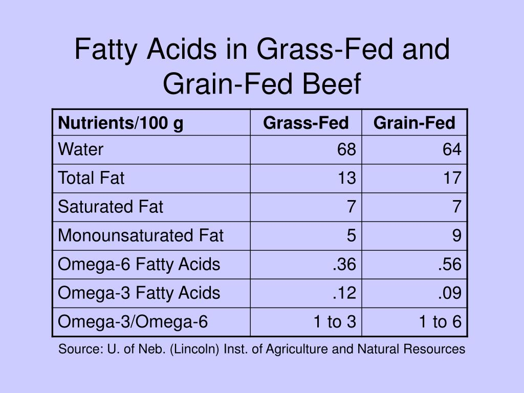 Fatty Acids in Grass-Fed and Grain-Fed Beef