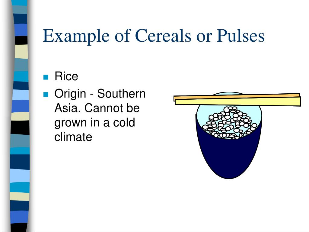 Example of Cereals or Pulses