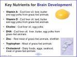 key nutrients for brain development