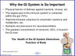 why the gi system is so important