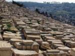mount of olives graves