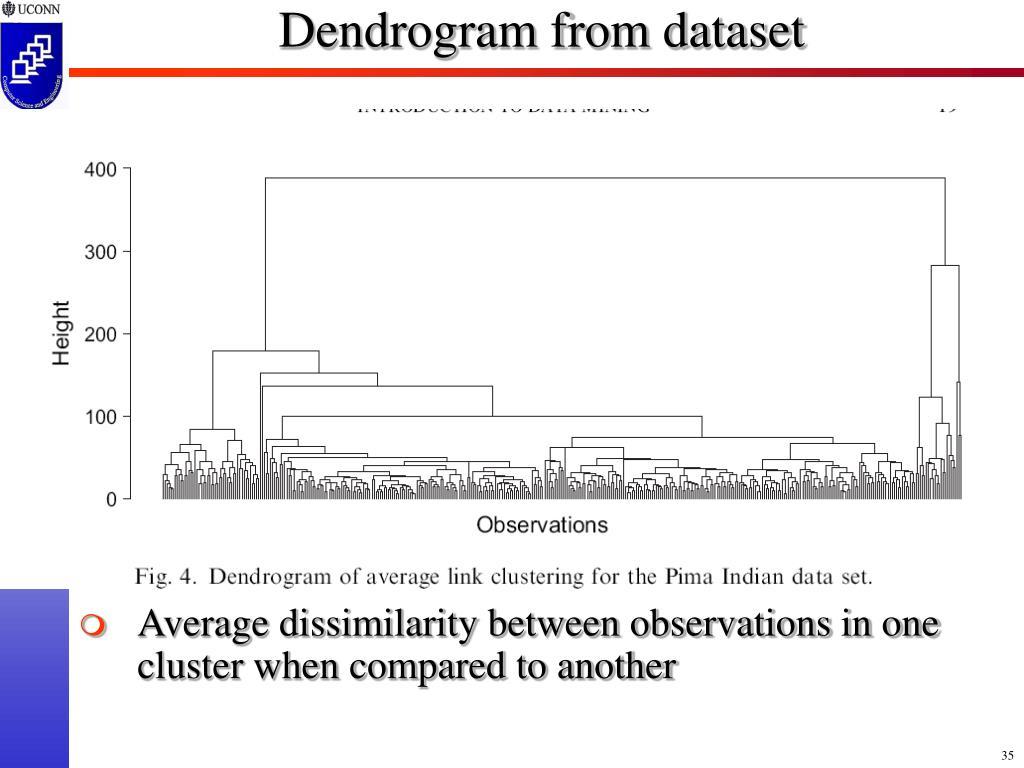Dendrogram from dataset