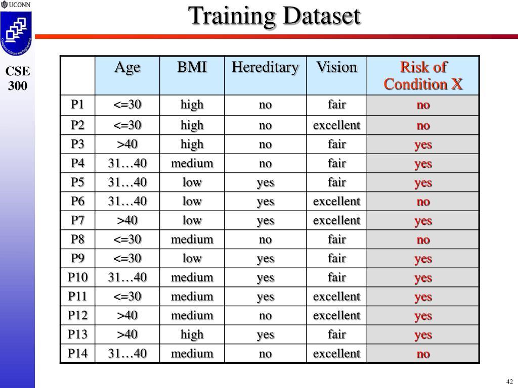 Training Dataset