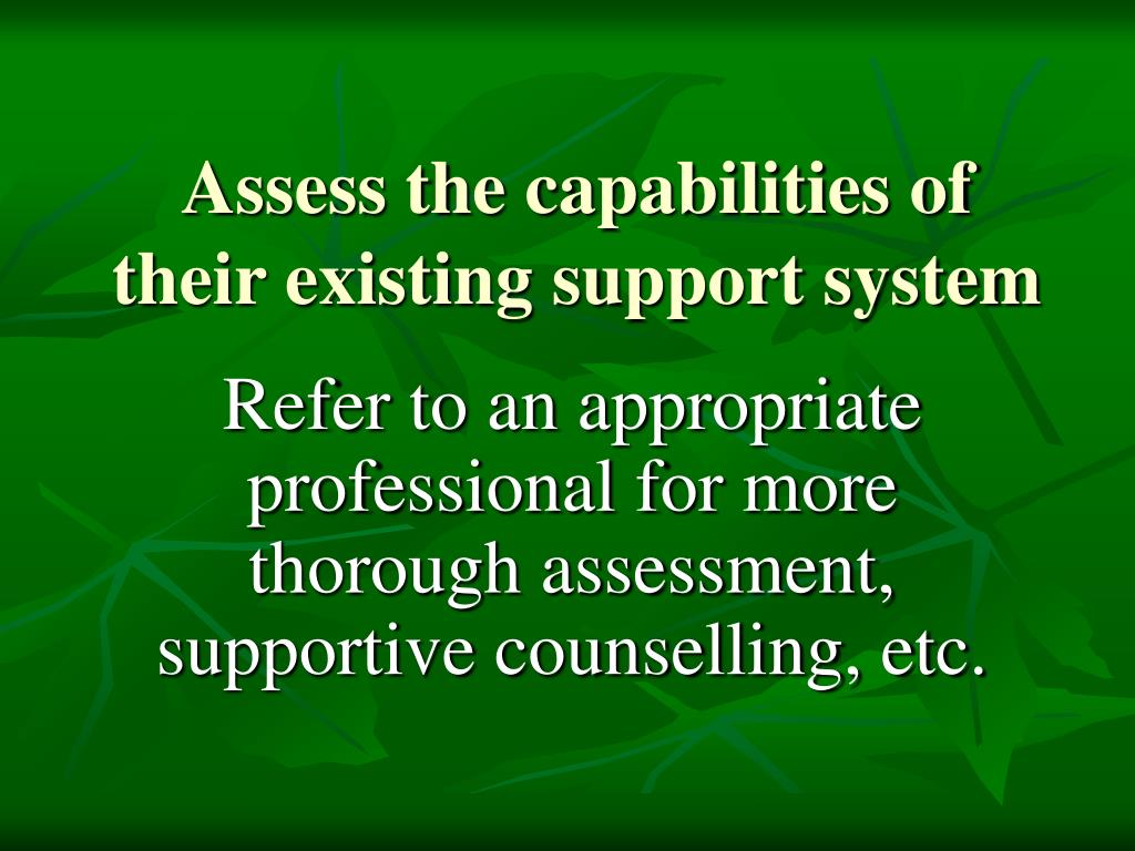 Assess the capabilities of their existing support system