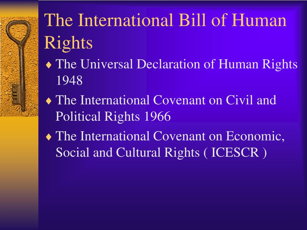 The International Bill of Human Rights