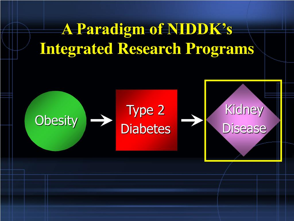 A Paradigm of NIDDK's Integrated Research Programs