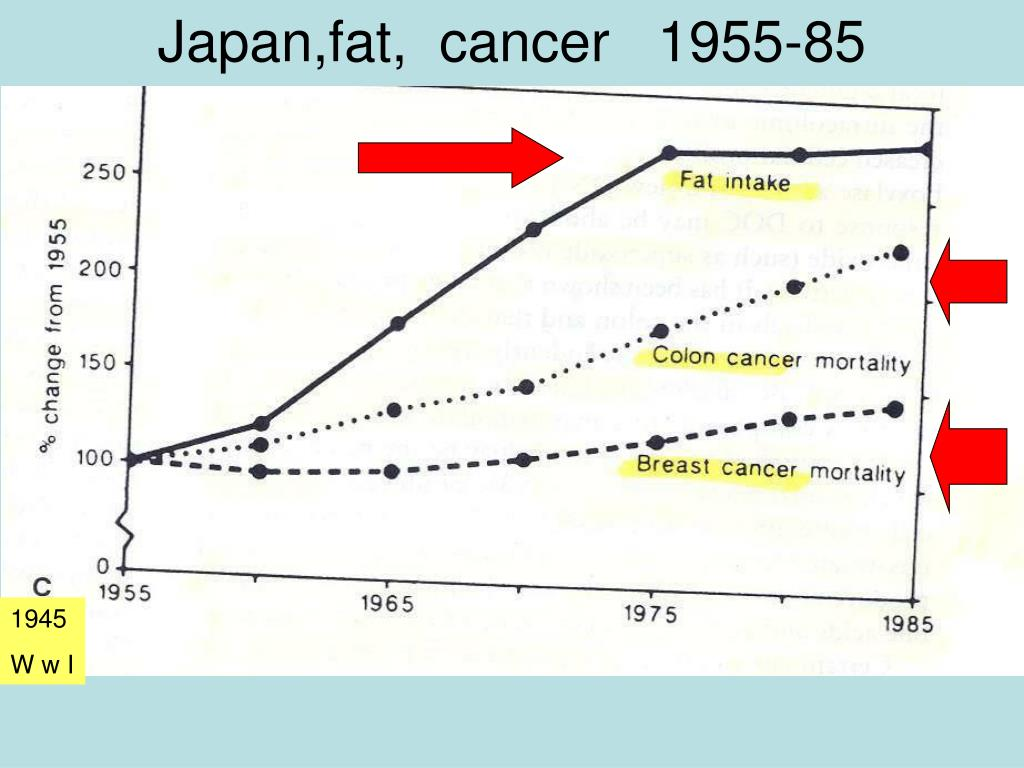 Japan,fat,  cancer   1955-85