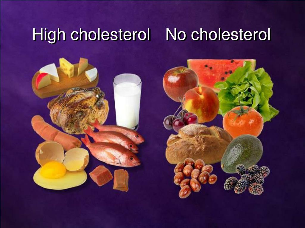 No cholesterol