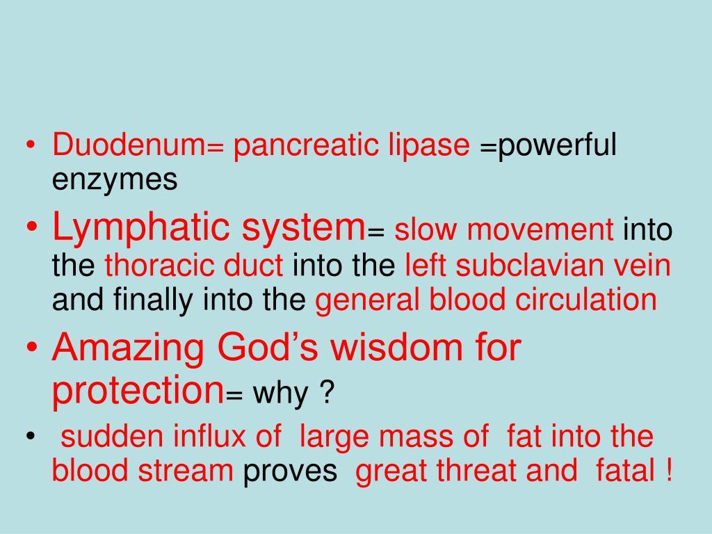 Duodenum= pancreatic lipase