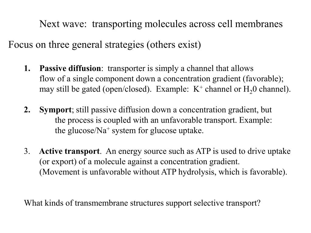 Next wave:  transporting molecules across cell membranes