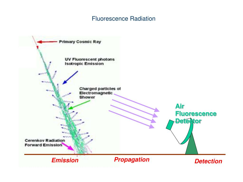 Air Fluorescence Detector