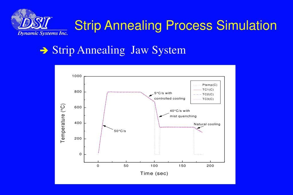 Strip Annealing Process Simulation