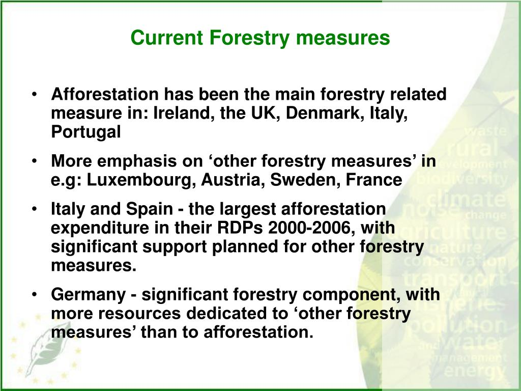 Current Forestry measures