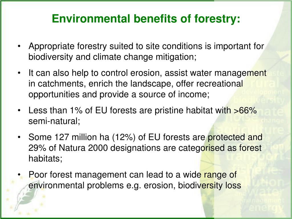 Environmental benefits of forestry: