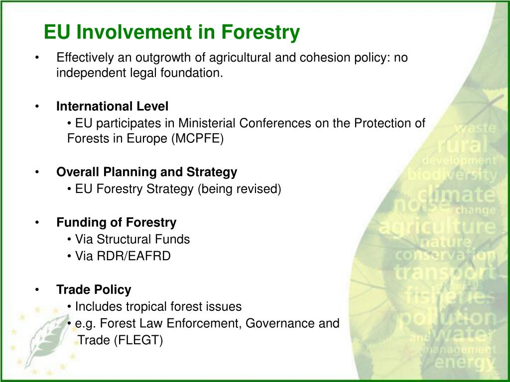 EU Involvement in Forestry
