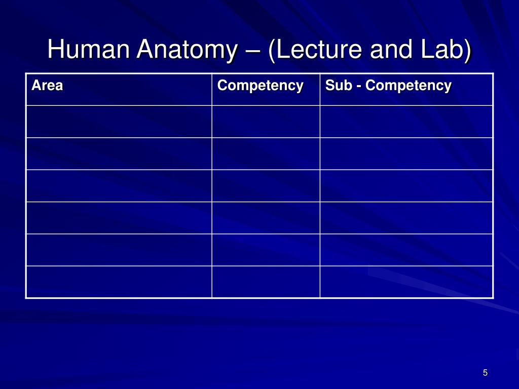 Human Anatomy – (Lecture and Lab)
