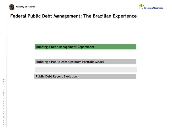 Federal public debt management the brazilian experience