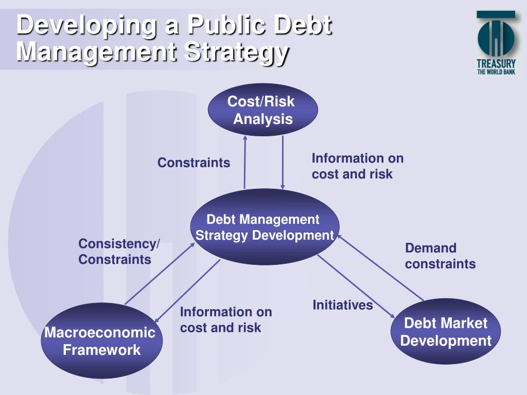 Developing a Public Debt Management Strategy