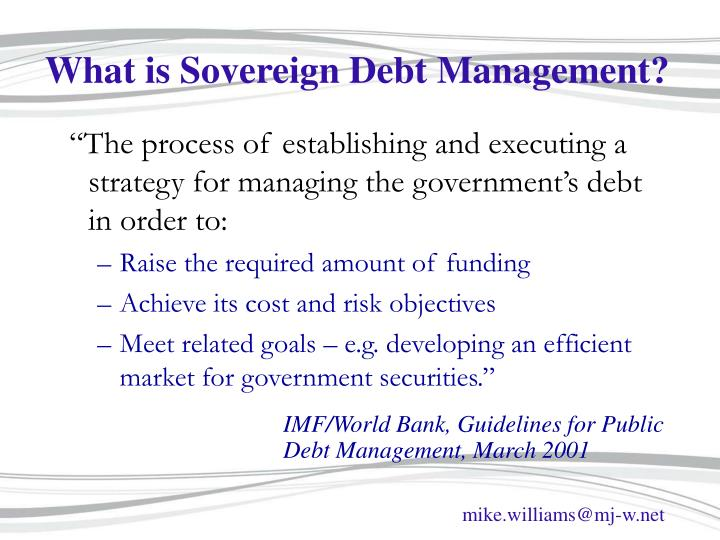 What is sovereign debt management
