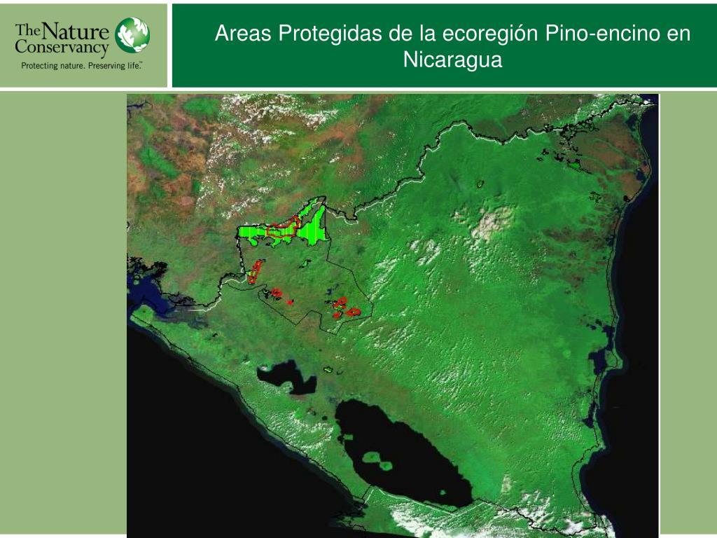 Areas Protegidas de la ecoregión Pino-encino en Nicaragua