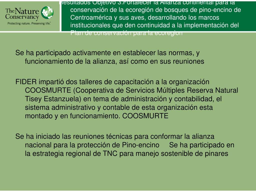 Resultados Objetivo 3:Fortalecer la Alianza continental para la conservación de la ecoregión de bosques de pino-encino de Centroamérica y sus aves, desarrollando los marcos institucionales que den continuidad a la implementación del Plan de conservación para la ecoregion