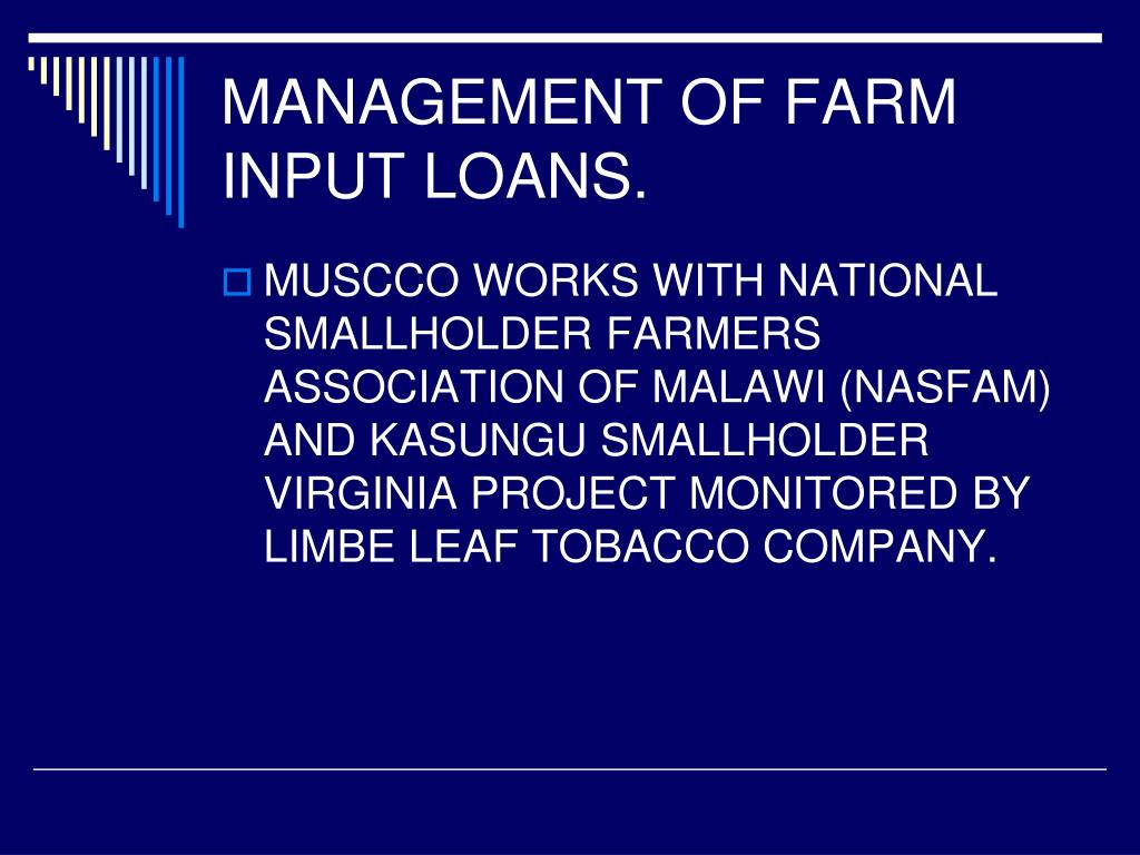 MANAGEMENT OF FARM INPUT LOANS.