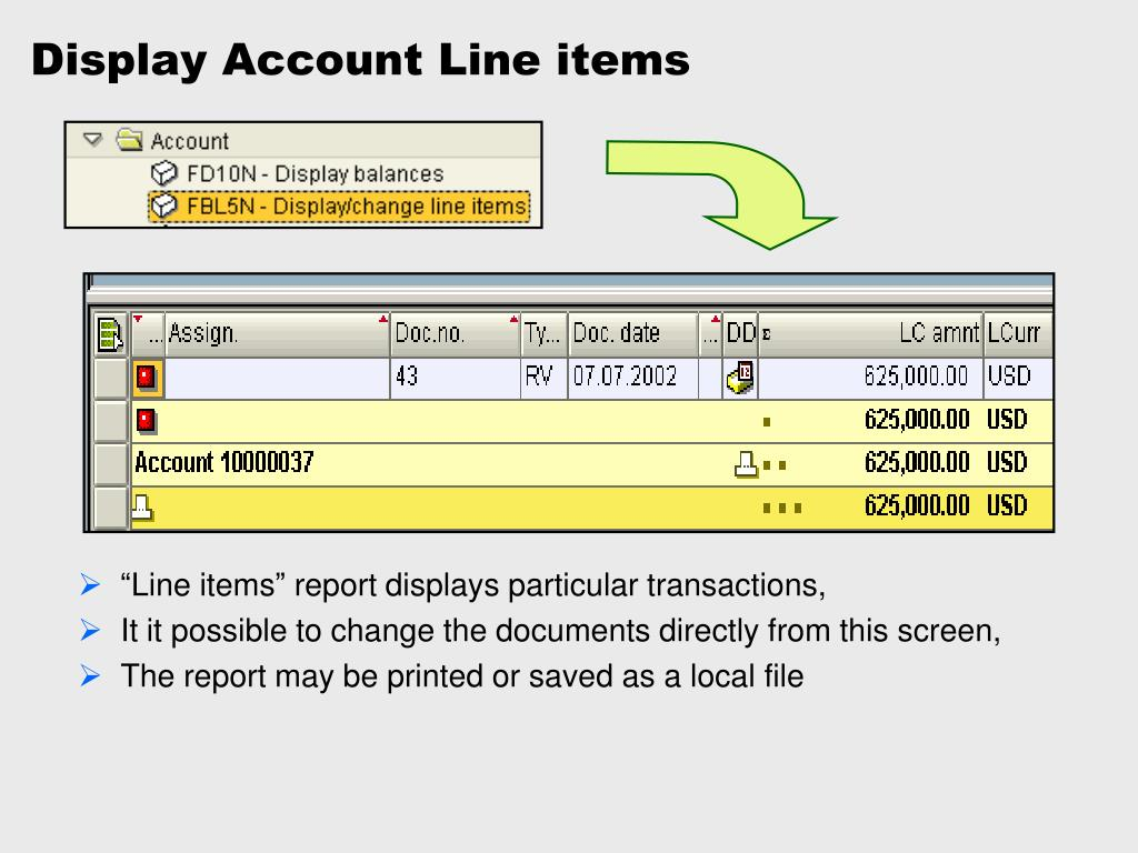 Display Account Line items