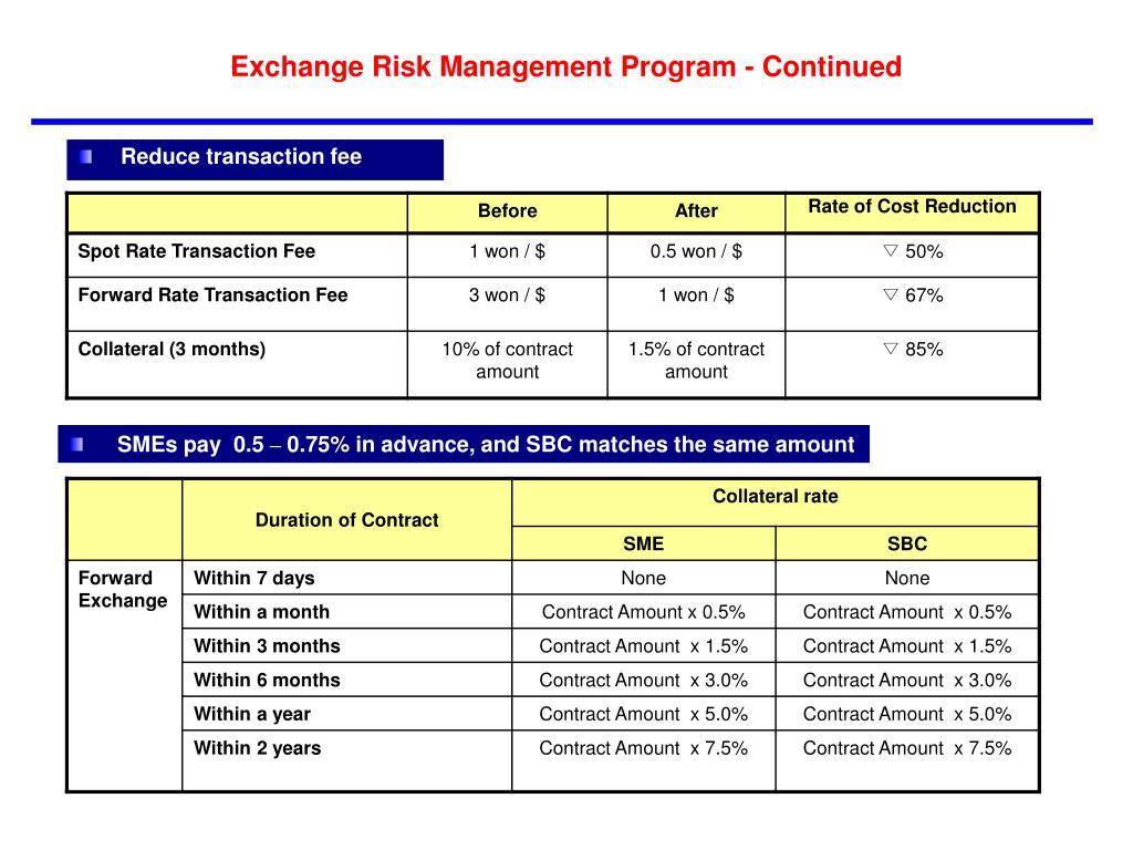 Exchange Risk Management Program - Continued