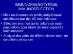 immunophenotypage immunoselection