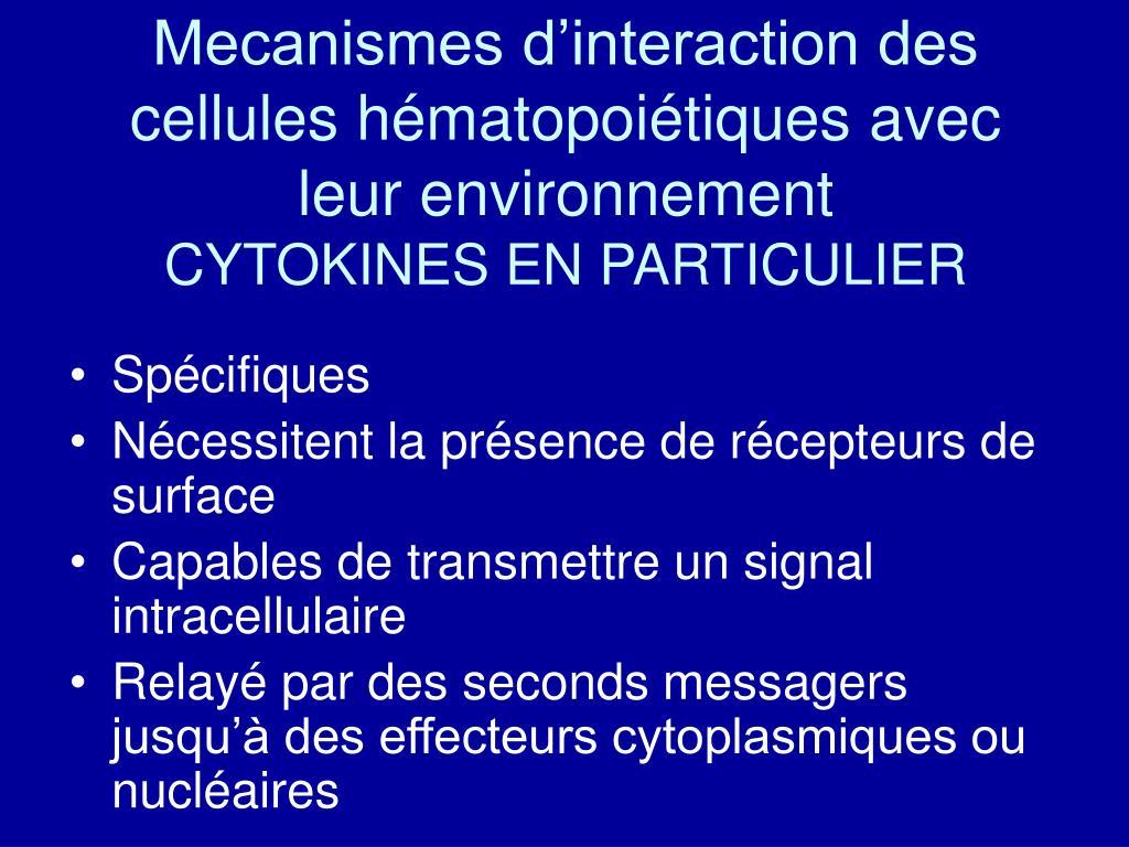 Mecanismes d'interaction des cellules hématopoiétiques avec leur environnement