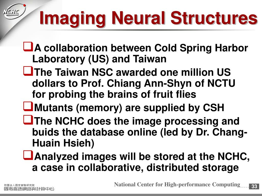 Imaging Neural Structures