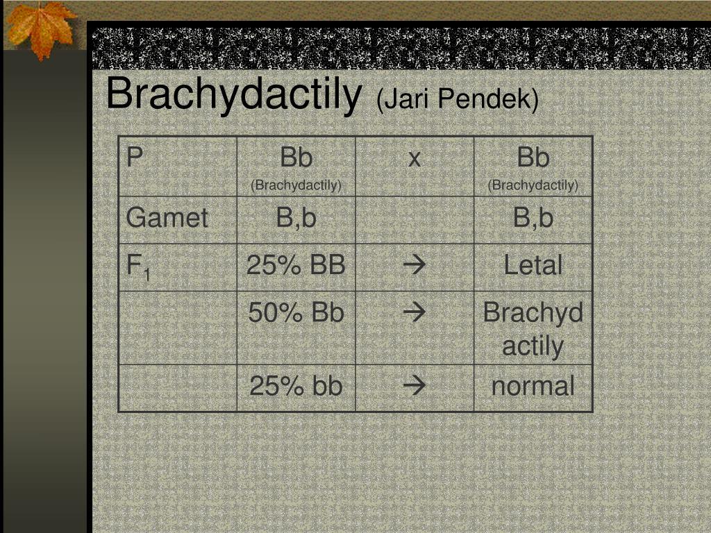Brachydactily