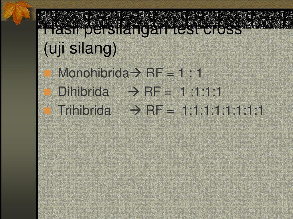 Hasil persilangan test cross