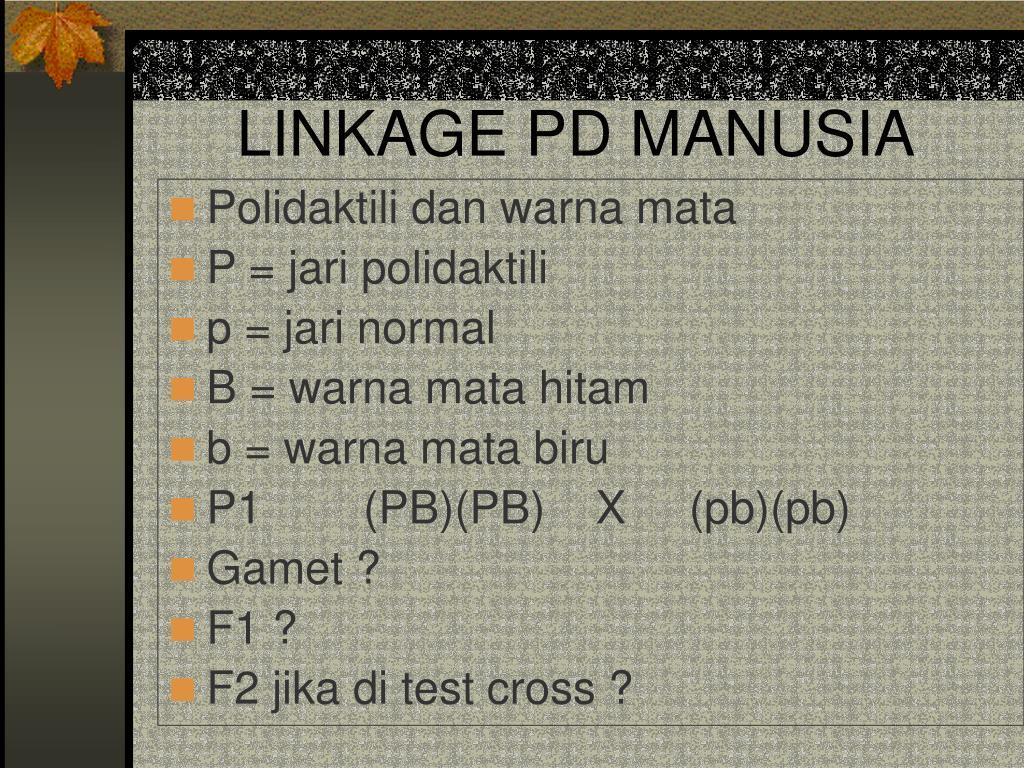 LINKAGE PD MANUSIA