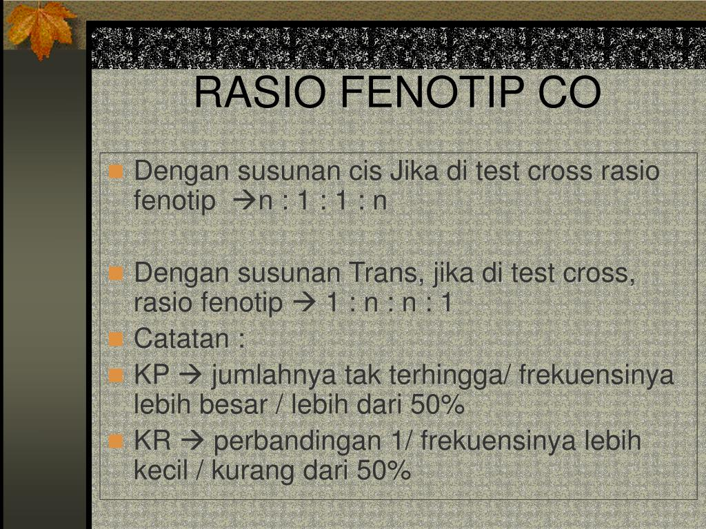 RASIO FENOTIP CO