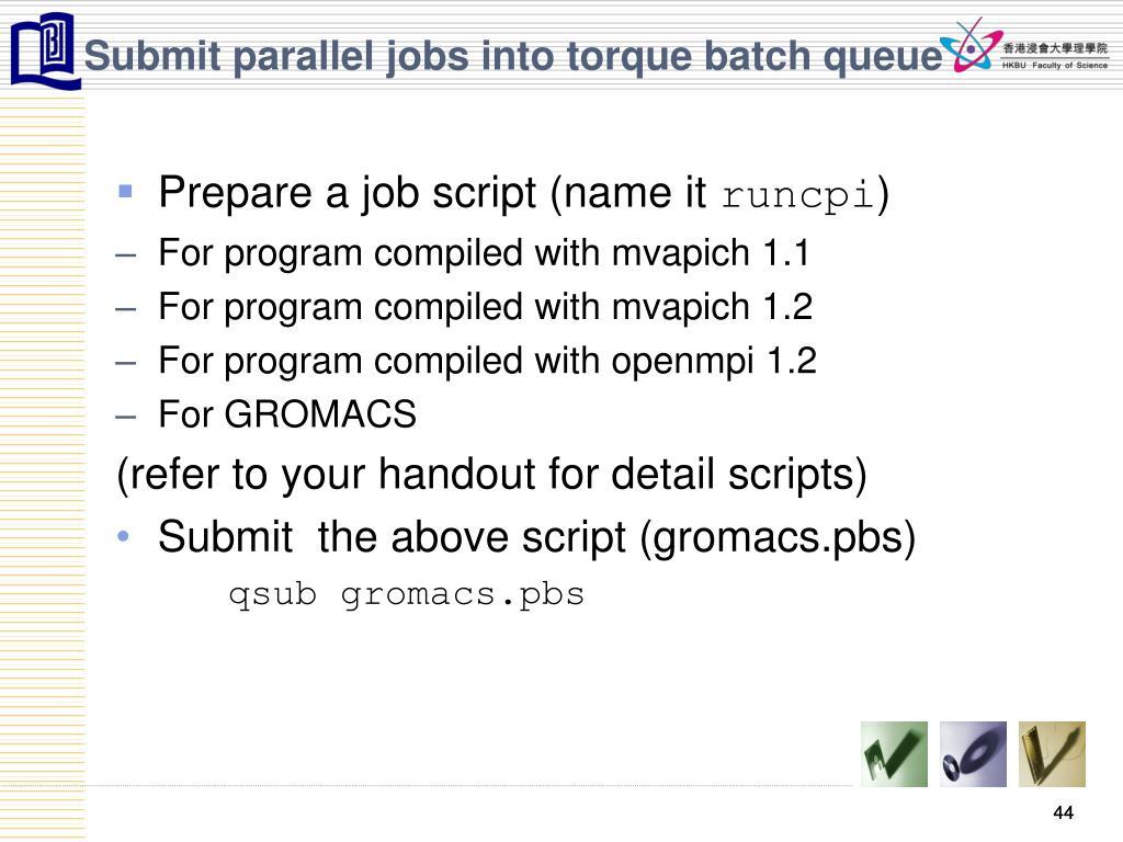 Submit parallel jobs into torque batch queue