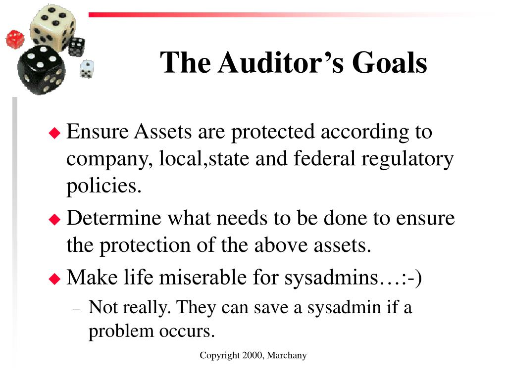 The Auditor's Goals