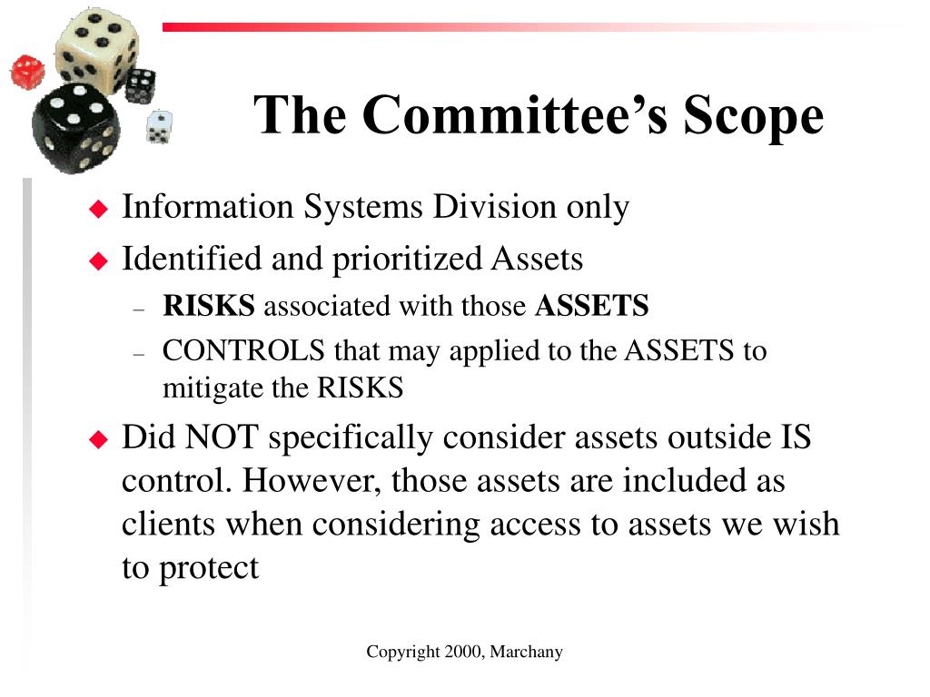 The Committee's Scope