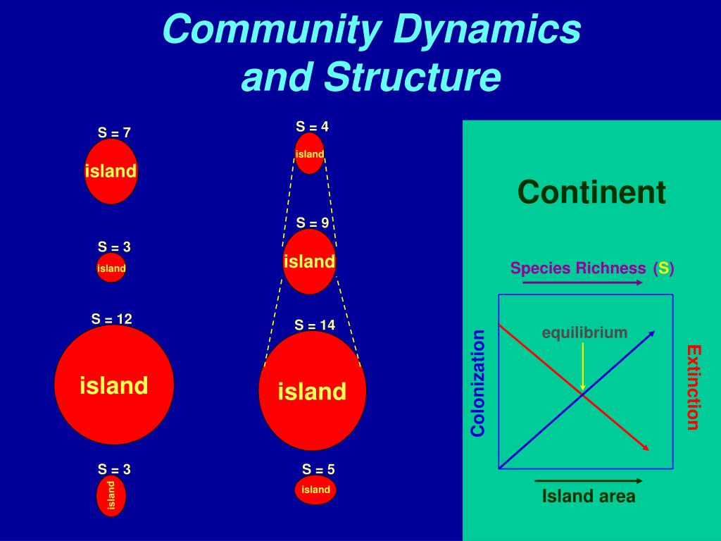 Community Dynamics and Structure