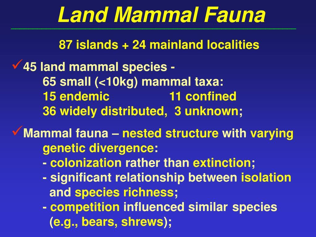 Land Mammal Fauna