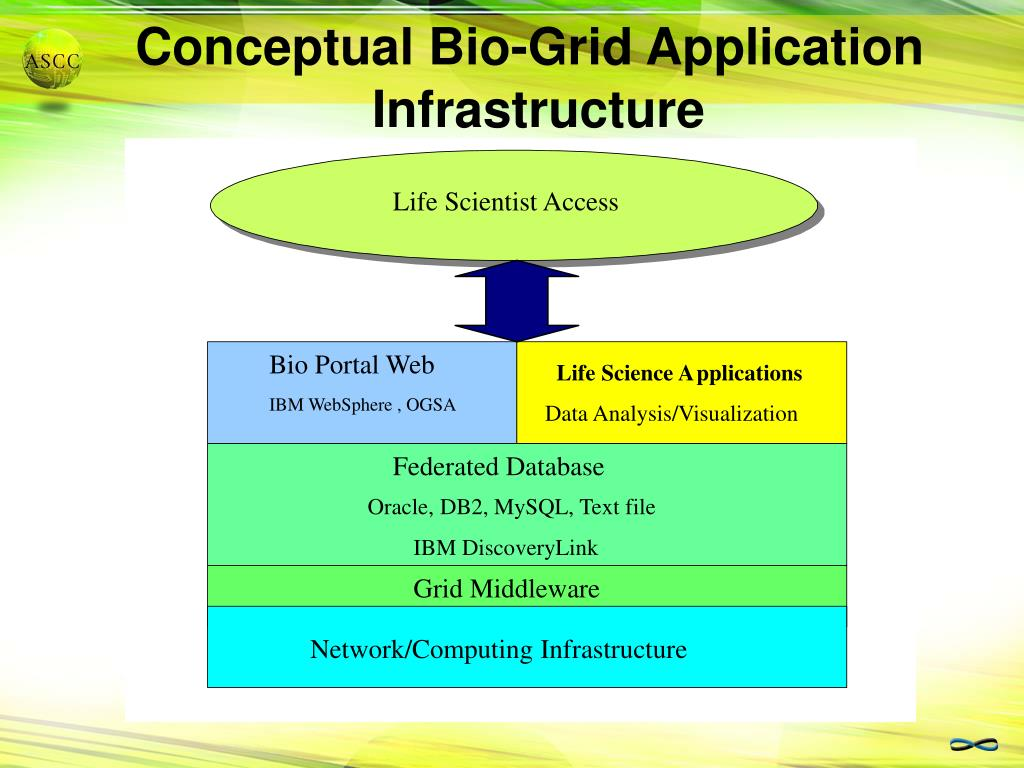 Conceptual Bio-Grid Application Infrastructure