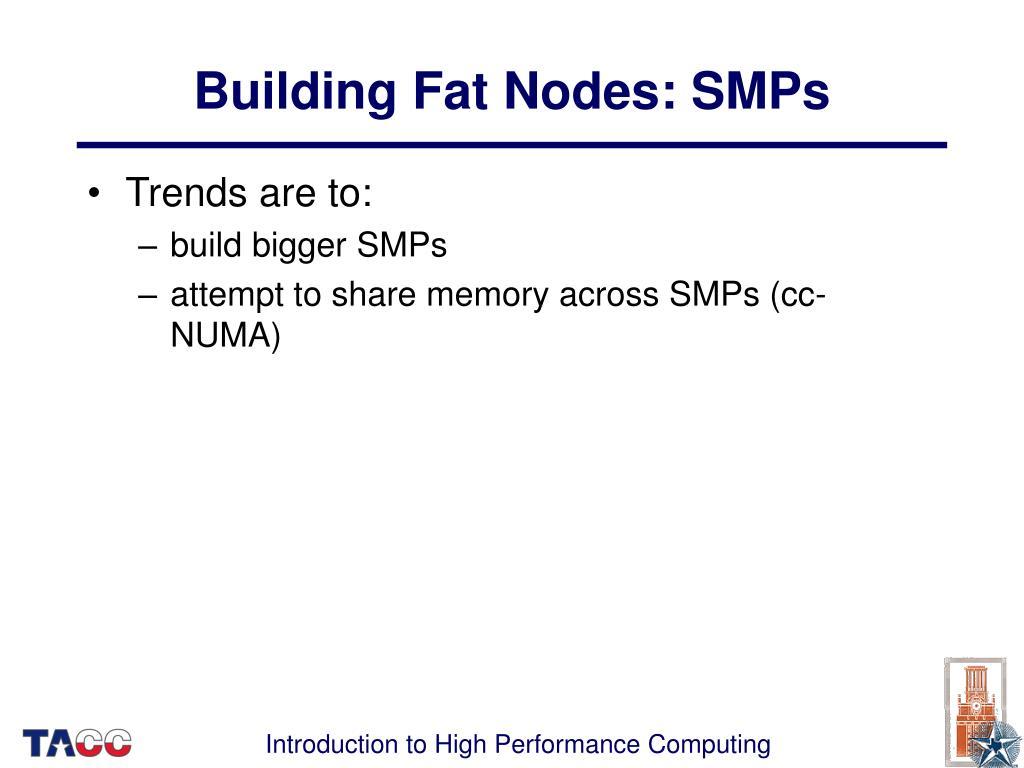 Building Fat Nodes: SMPs