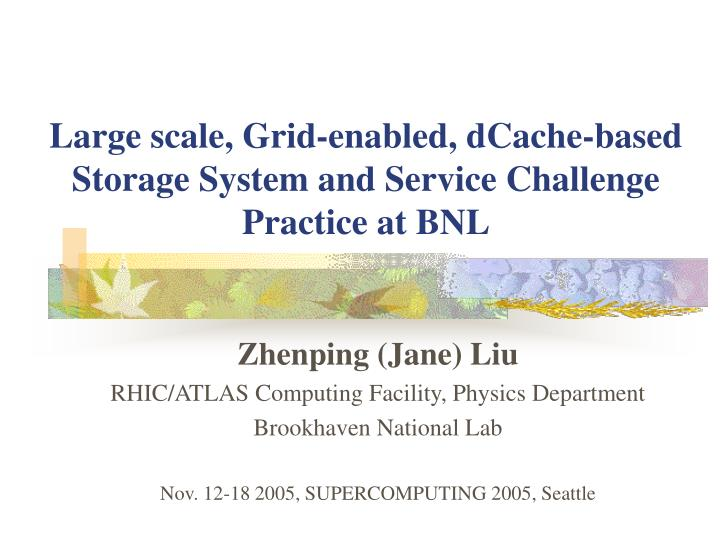 Large scale grid enabled dcache based storage system and service challenge practice at bnl