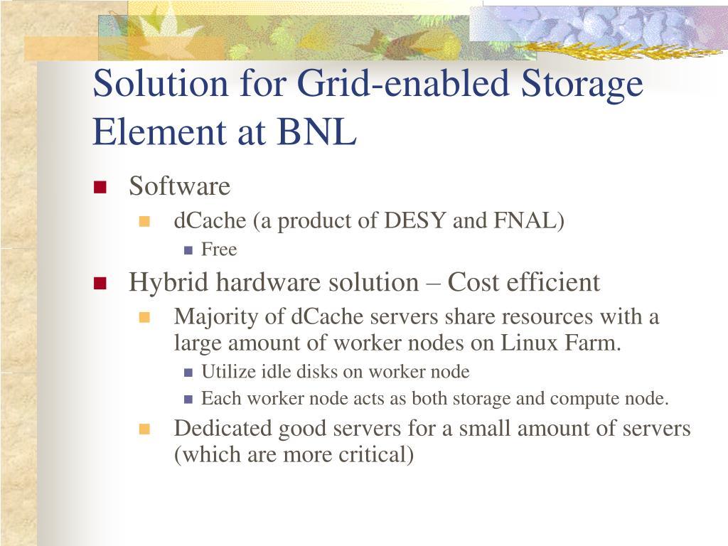 Solution for Grid-enabled Storage Element at BNL