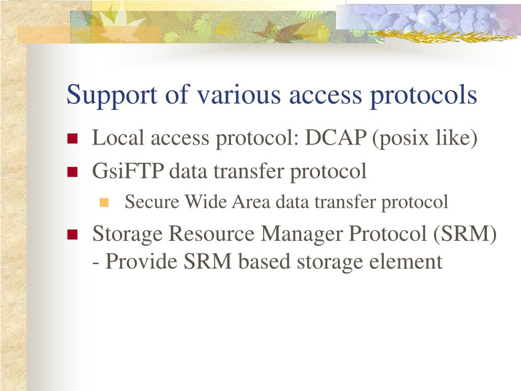 Support of various access protocols