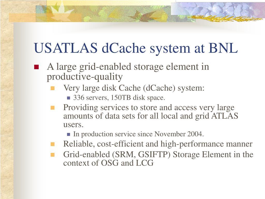 USATLAS dCache system at BNL