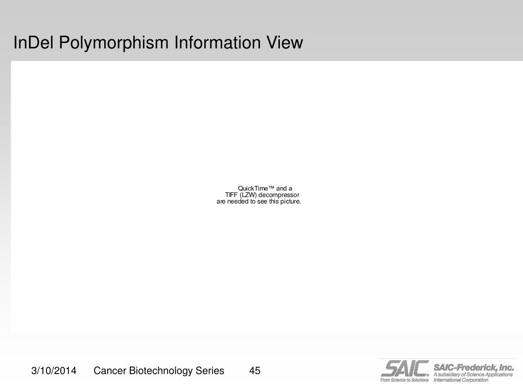 InDel Polymorphism Information View