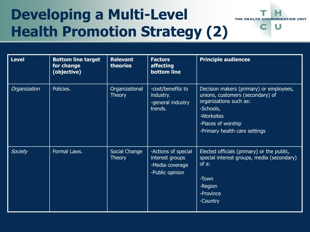 Developing a Multi-Level Health Promotion Strategy (2)